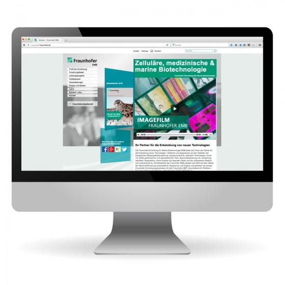Webseite   Fraunhofer EMB